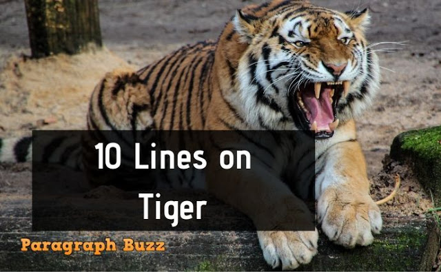 10 Lines on Tiger