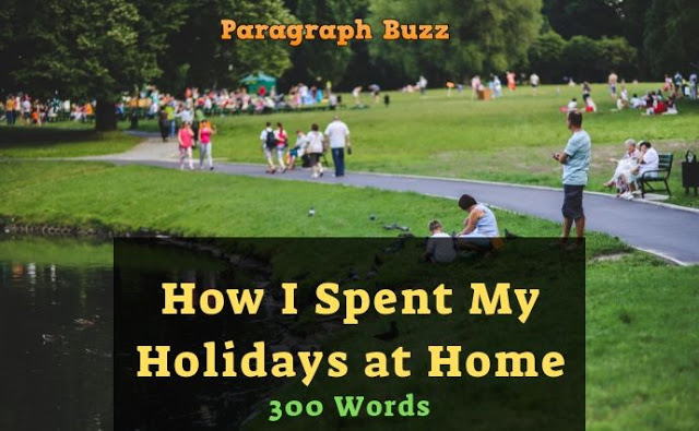 Essay on How I Spent My Holidays at Home