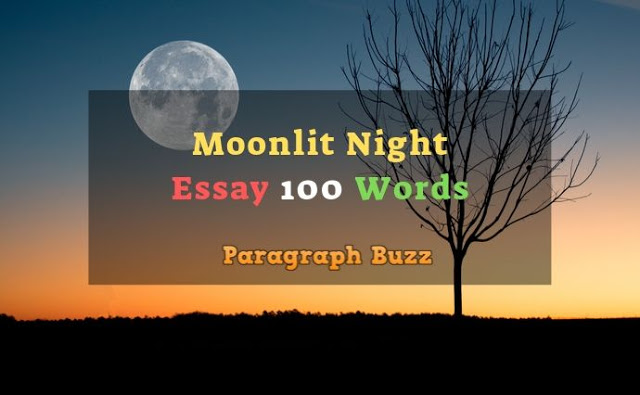 Essay on a Moonlit Night in 100 Words
