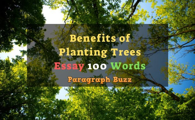 Essay on Benefits of Planting Trees in 100 Words